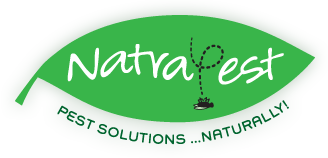 Natural Pest Control Products and Services Melbourne